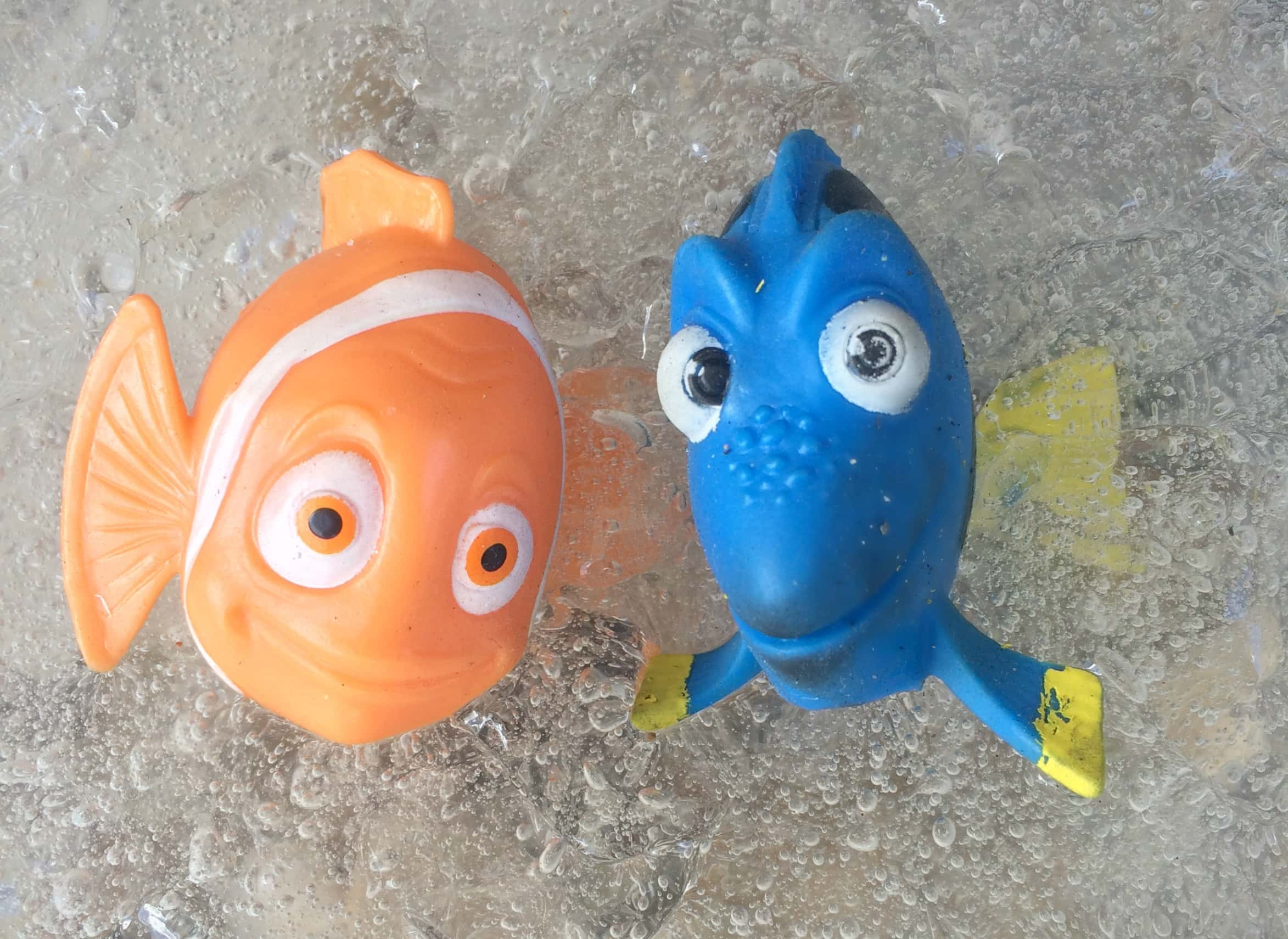 Super Simple Finding Dory Activity