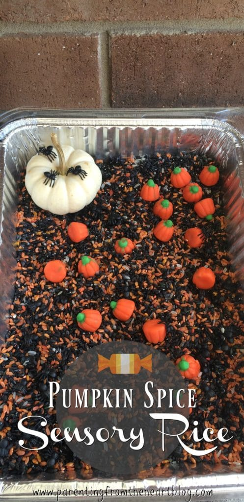 Make coloured pumpkin spice sensory rice and have a whole lot of fun. This is so easy to set up, is so much fun, and is loaded with the benefits of sensory play. Adapt this recipe for any season or time of year. Great for early childhood educators, parents looking for easy kids activities and more.