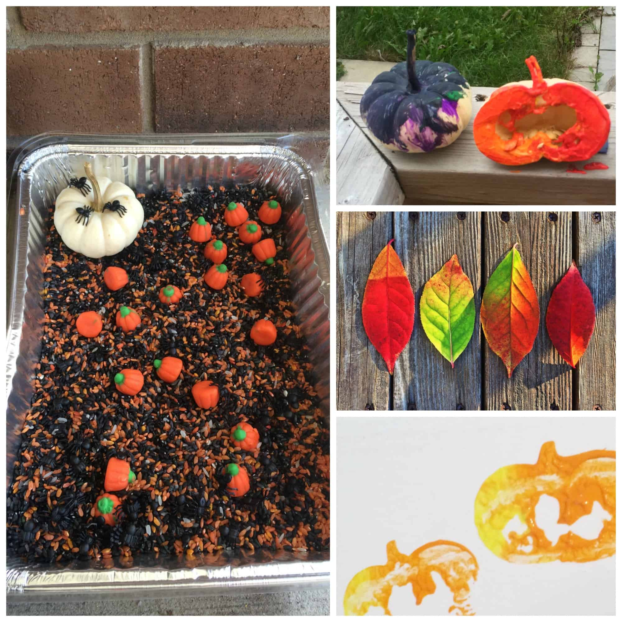 Fun Fall Activities to Bring the Magic of Season to Life